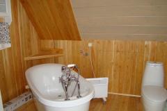 отделка внутри дачного дома ванная